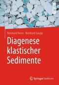 Hesse / Gaupp |  Diagenese klastischer Sedimente | Buch |  Sack Fachmedien