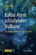 Pfanz |  Kalter Atem schlafender Vulkane | Buch |  Sack Fachmedien