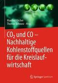 Kircher / Schwarz |  CO2 und CO - Nachhaltige Kohlenstoffquellen für die Kreislaufwirtschaft | Buch |  Sack Fachmedien