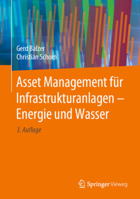 Balzer / Schorn | Asset Management für Infrastrukturanlagen - Energie und Wasser | Buch | sack.de