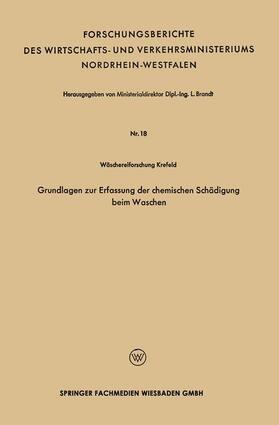 Brandt | Grundlagen zur Erfassung der chemischen Schädigung beim Waschen | Buch | sack.de
