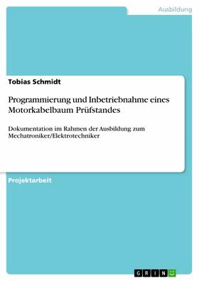 Schmidt | Programmierung und Inbetriebnahme eines Motorkabelbaum Prüfstandes | E-Book | sack.de