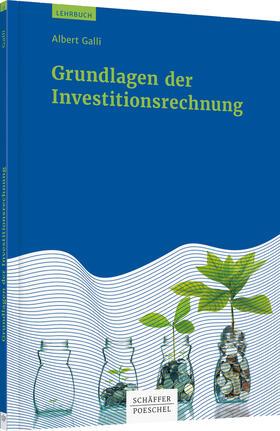 Galli | Grundlagen der Investitionsrechnung | Buch | sack.de