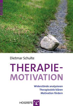 Schulte | Therapiemotivation | Buch | sack.de