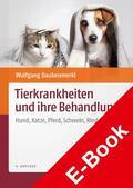 Daubenmerkl |  Tierkrankheiten und ihre Behandlung | eBook | Sack Fachmedien