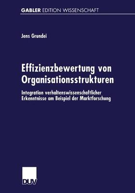 Effizienzbewertung von Organisationsstrukturen | Buch | sack.de