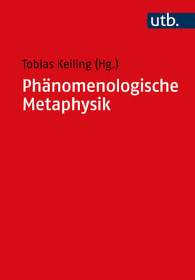 Keiling | Phänomenologische Metaphysik | Buch | sack.de