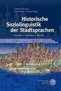 Pickl / Elspaß |  Historische Soziolinguistik der Stadtsprachen | Buch |  Sack Fachmedien