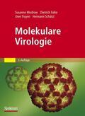 Modrow / Falke / Schätzl |  Molekulare Virologie | Buch |  Sack Fachmedien
