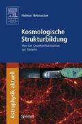 Hetznecker |  Kosmologische Strukturbildung | Buch |  Sack Fachmedien