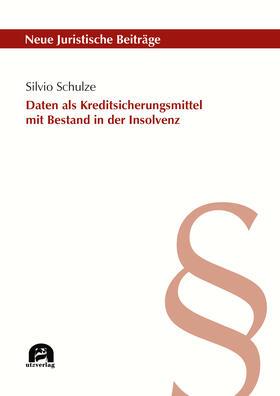 Schulze | Daten als Kreditsicherungsmittel mit Bestand in der Insolvenz | Buch | sack.de