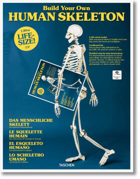 Build Your Own Human Skeleton - Life Size!; . | Buch | sack.de