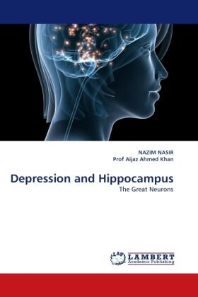 Depression and Hippocampus | Buch | sack.de