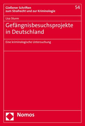 Sturm | Gefängnisbesuchsprojekte in Deutschland | Buch | sack.de