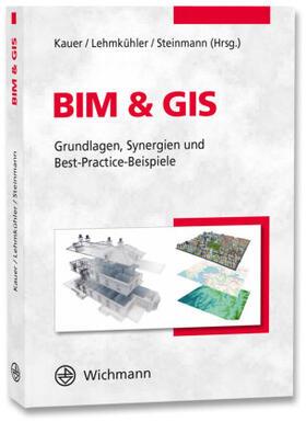 Kauer / Lehmkühler / Steinmann   BIM & GIS   Buch   sack.de