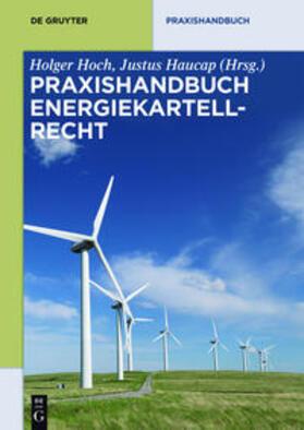 Hoch / Haucap | Praxishandbuch Energiekartellrecht | Buch