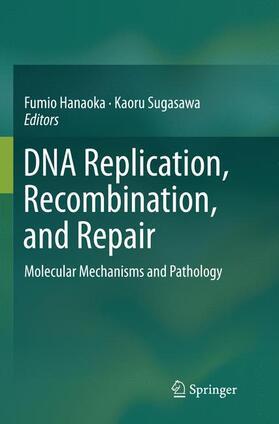 Hanaoka / Sugasawa   DNA Replication, Recombination, and Repair   Buch   sack.de