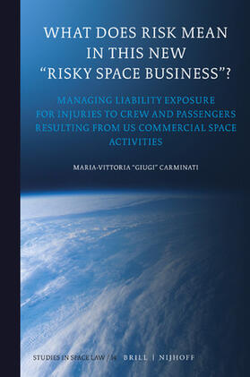 """Carminati   What Does Risk Mean in This New """"Risky Space Business""""?   Buch   sack.de"""