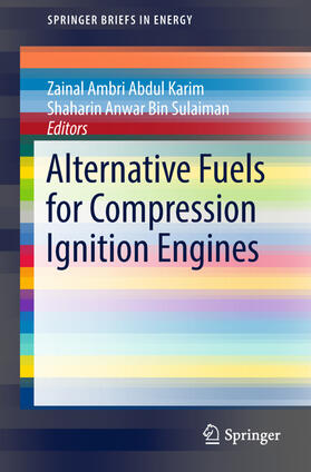 Abdul Karim / Sulaiman | Alternative Fuels for Compression Ignition Engines | Buch | sack.de
